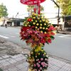 Hoa Khai Trương - HKT 27 2