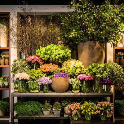 shop hoa tươi quận phú nhuận 2019