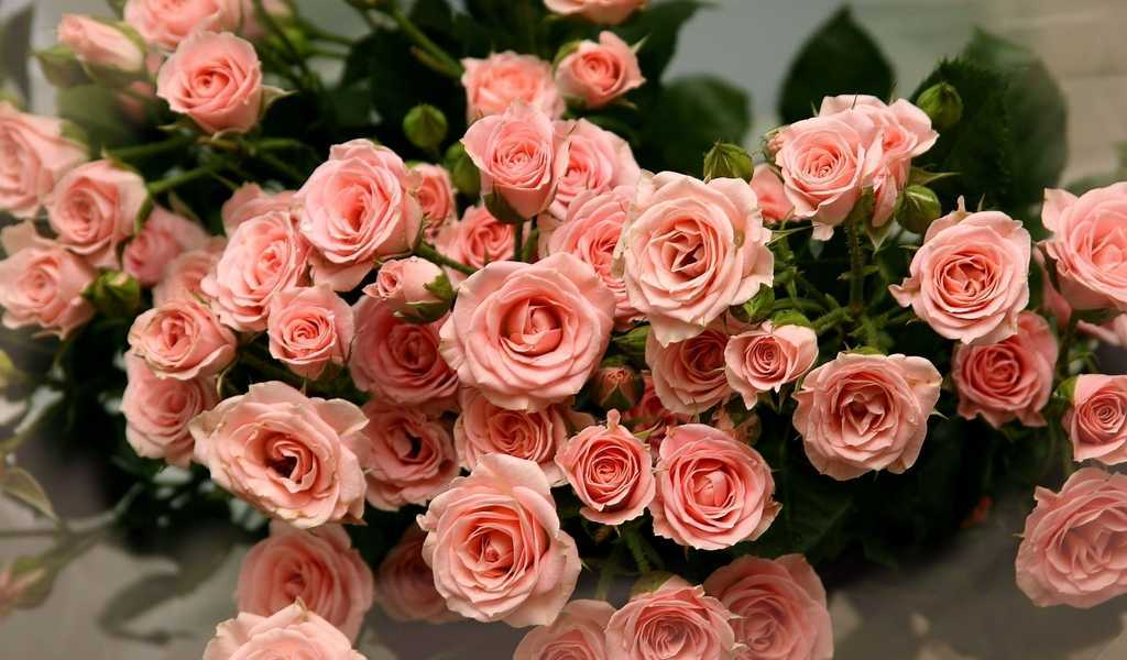 hoa tươi quận phú nhuận tphcm 1