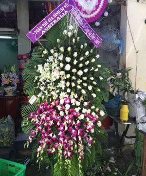 hoa chia buồn 56