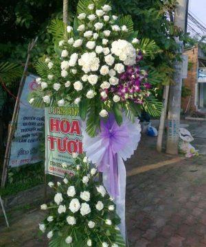 hoa chia buồn 58