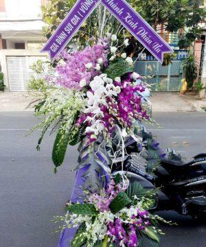 hoa chia buồn 60