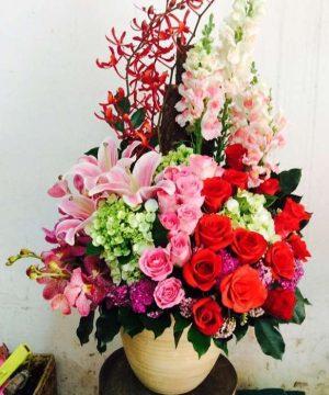 hoa sinh nhật 109