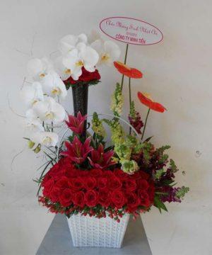 hoa sinh nhật 113
