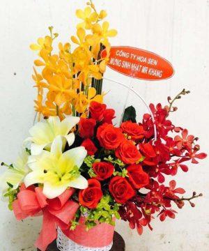 hoa sinh nhật 119