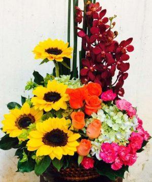 hoa sinh nhật 123