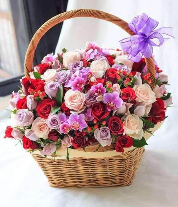 hoa sinh nhật 133