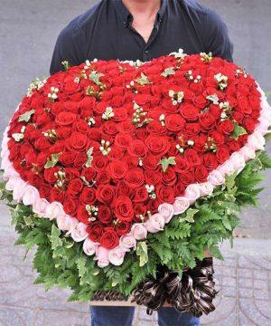 hoa tình yêu 94