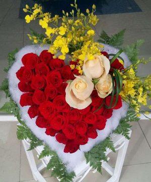 hoa tình yêu 95