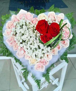 hoa tình yêu 96