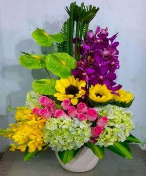 hoa sinh nhật 158
