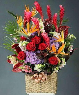 hoa sinh nhật 183