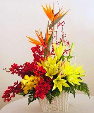 giỏ hoa tươi (24)