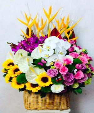 giỏ hoa tươi (25)