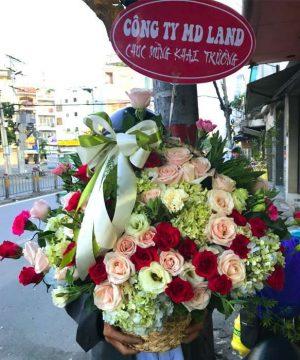 giỏ hoa tươi 42