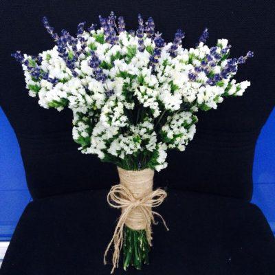 hoa salem đẹp nhất 1