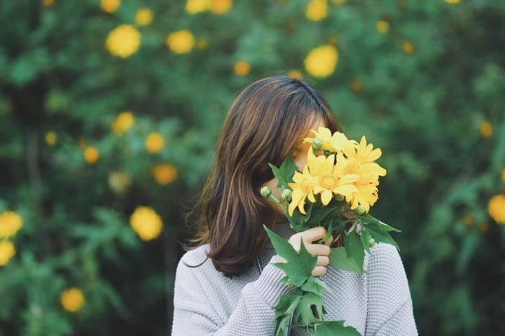 Sự tích về loài hoa dã quỳ bạn có biết 5