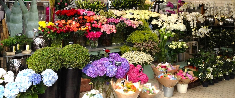 lựa chọn mặt bằng khi kinh doanh hoa tươi