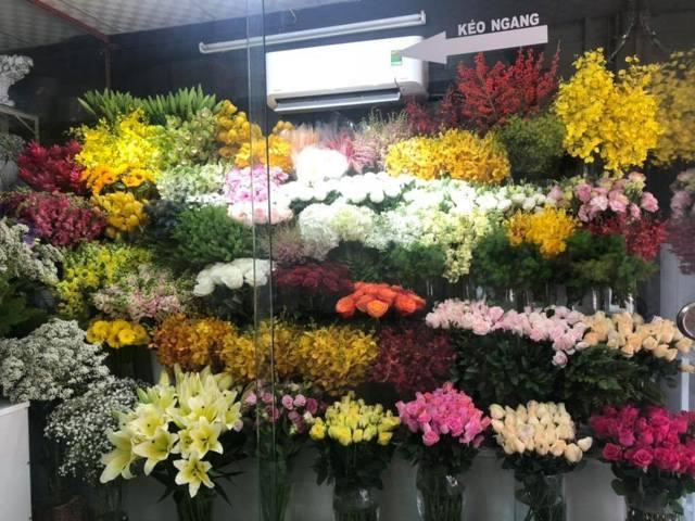 giới thiệu hoa tươi văn nam (1)