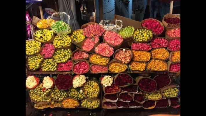 kinh nghiệm mua hoa chợ hồ thị kỷ (1)