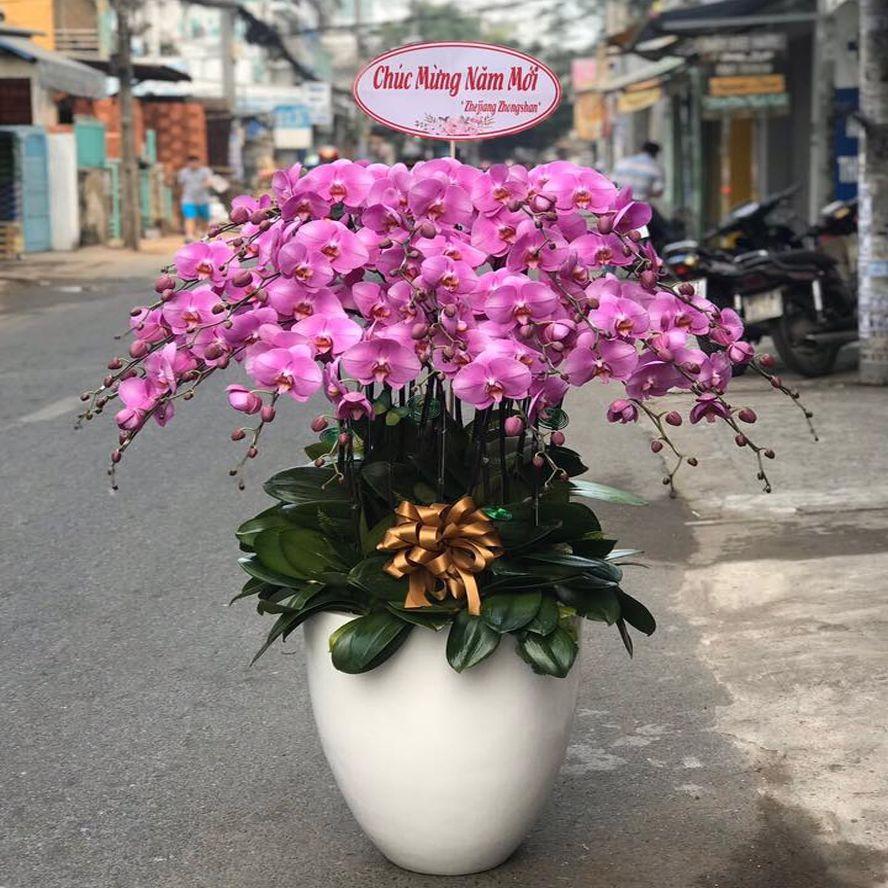 cửa hàng hoa tươi quảng nam