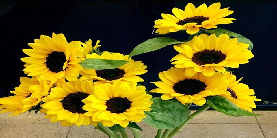 hoa tươi biên hòa 2