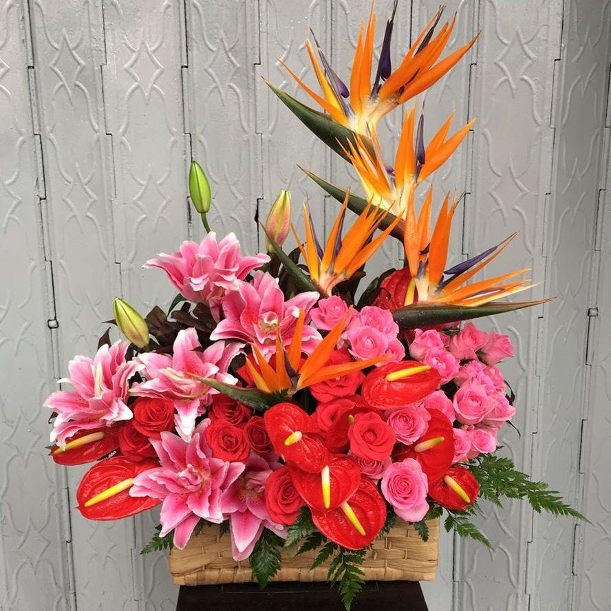 shop hoa tại tỉnh yên bái