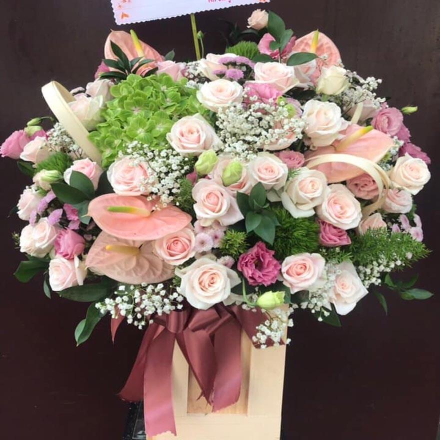 shop hoa tươi bà rịa 2019