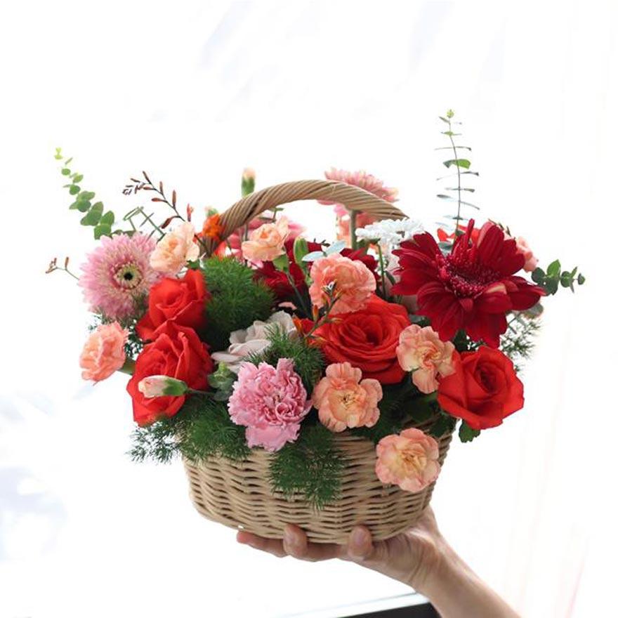 shop hoa tươi bạc liêu 2019
