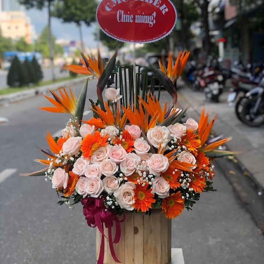 shop hoa tươi tỉnh bình định 2019