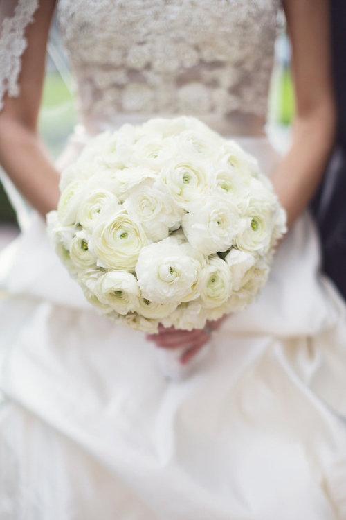 hoa mao lương màu trắng đẹp nhất 1