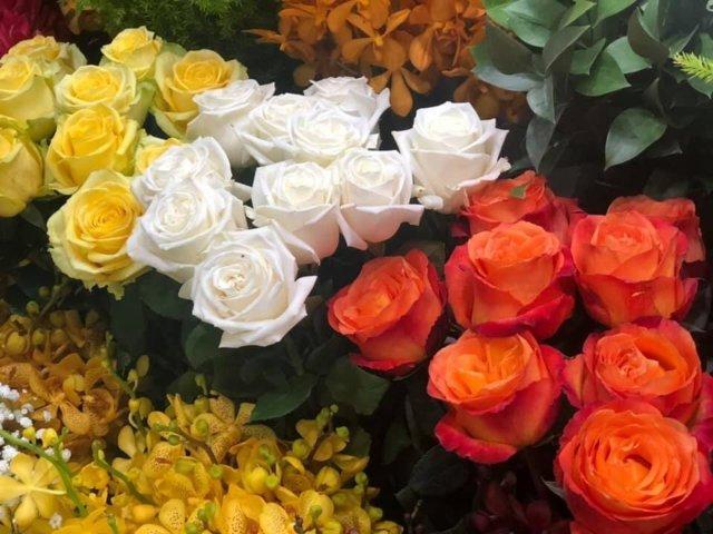 hoa tươi văn nam 2019