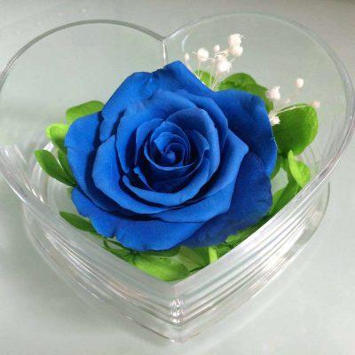 ý nghĩa của màu xanh dương trong tình yêu