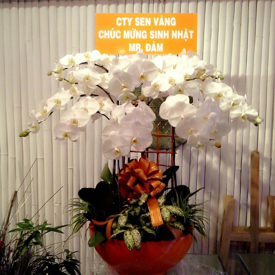 cửa hàng hoa tươi huyện nhà bè 2019