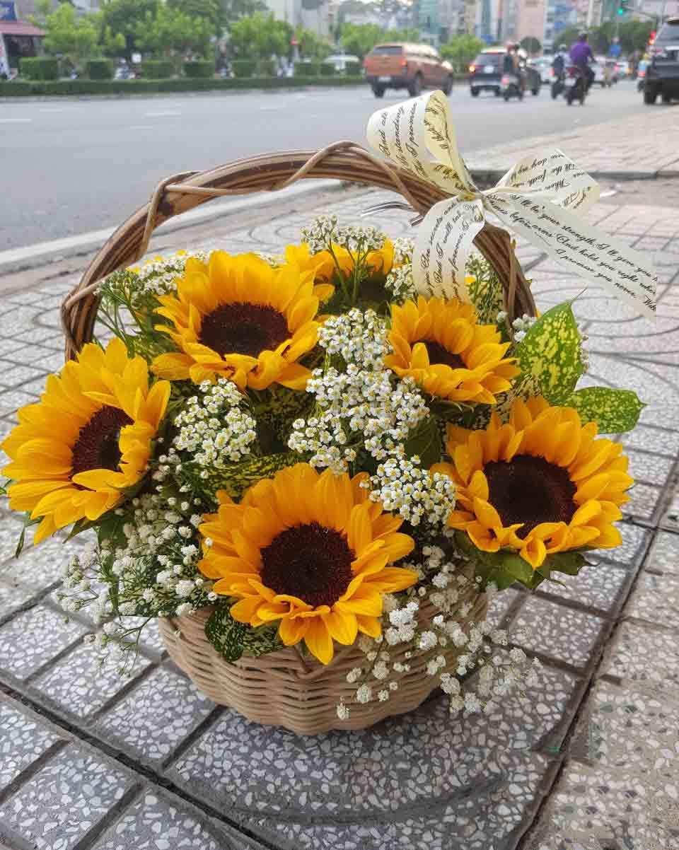 lẵng hoa hướng dương 4