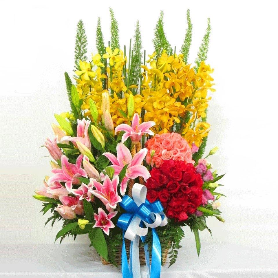 shop hoa tươi quận tân phú 2019
