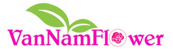 Shop Hoa Tươi Văn Nam | Dịch Vụ Điện Hoa Online Tốt Nhất TPHCM