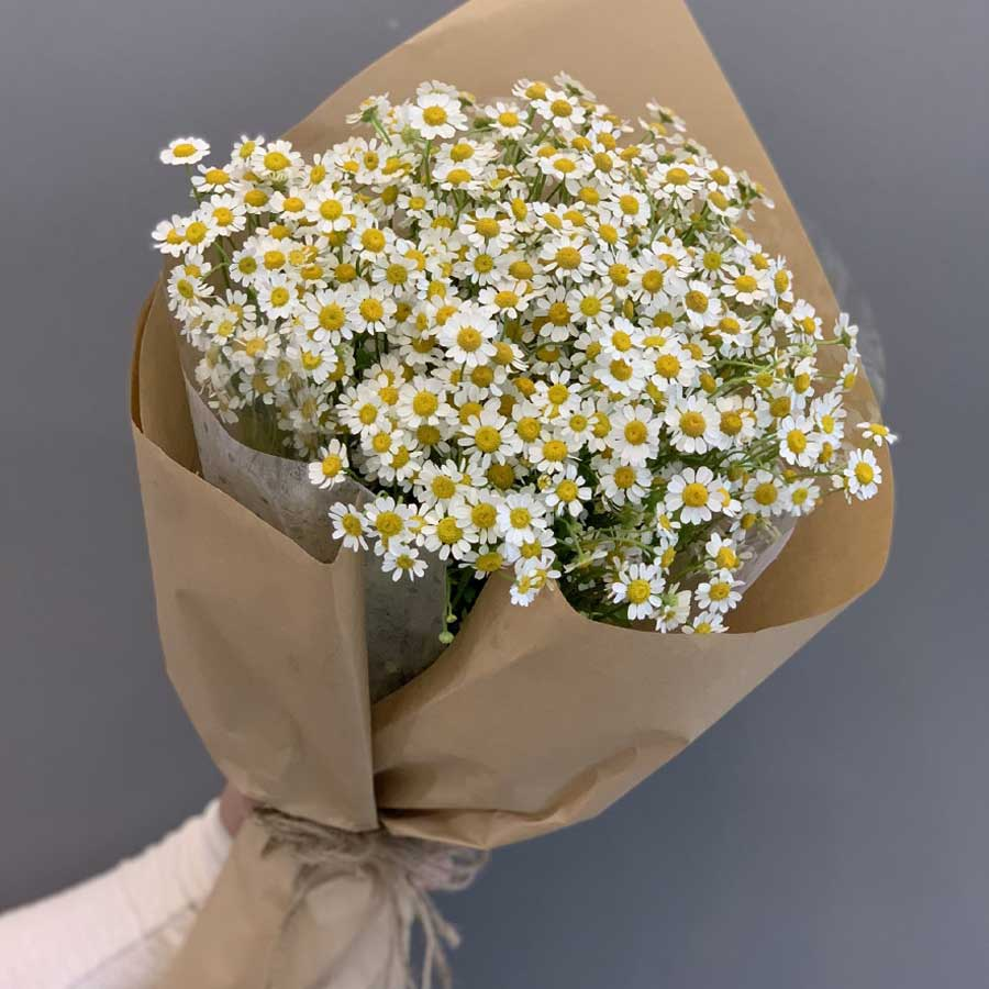 Bó hoa cúc tặng ngày 8-3