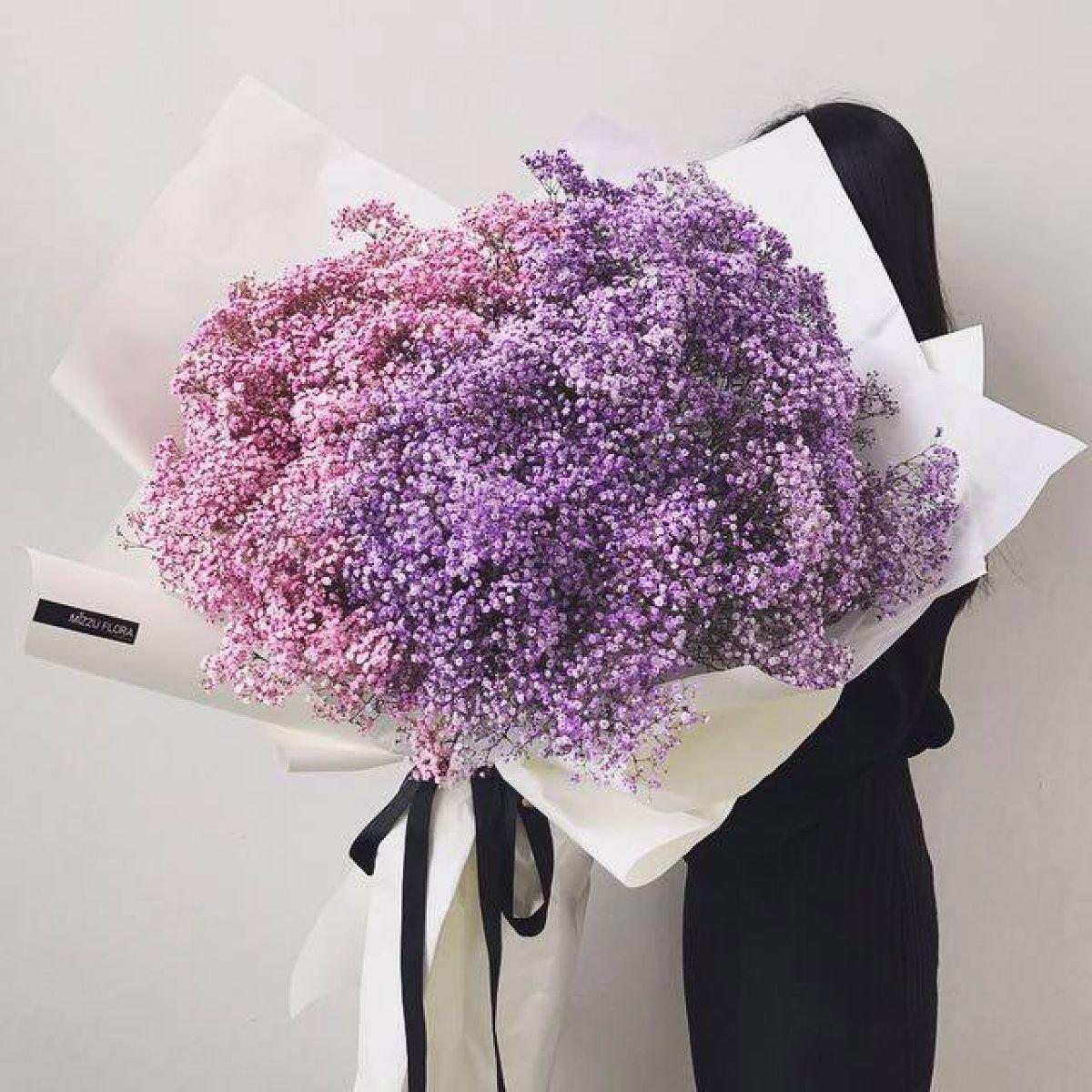 Hoa baby màu tím tặng sinh nhật