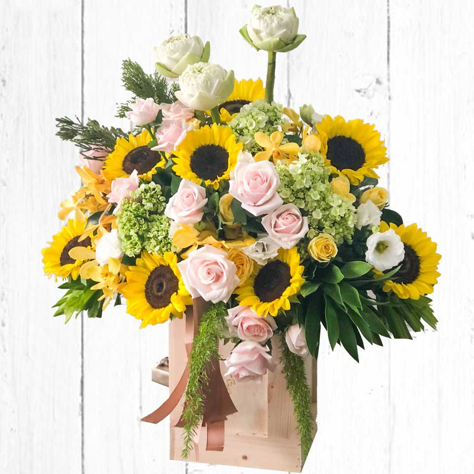 Hoa hướng dương mừng thọ