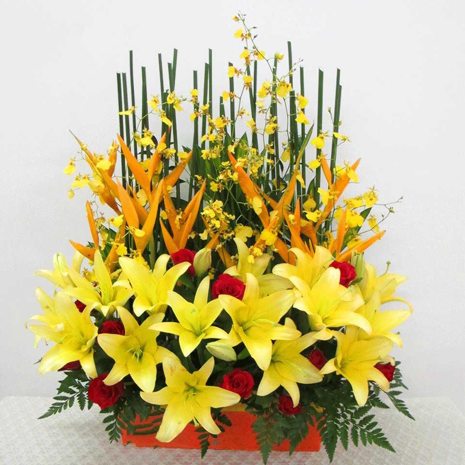 Hoa lily mừng thọ