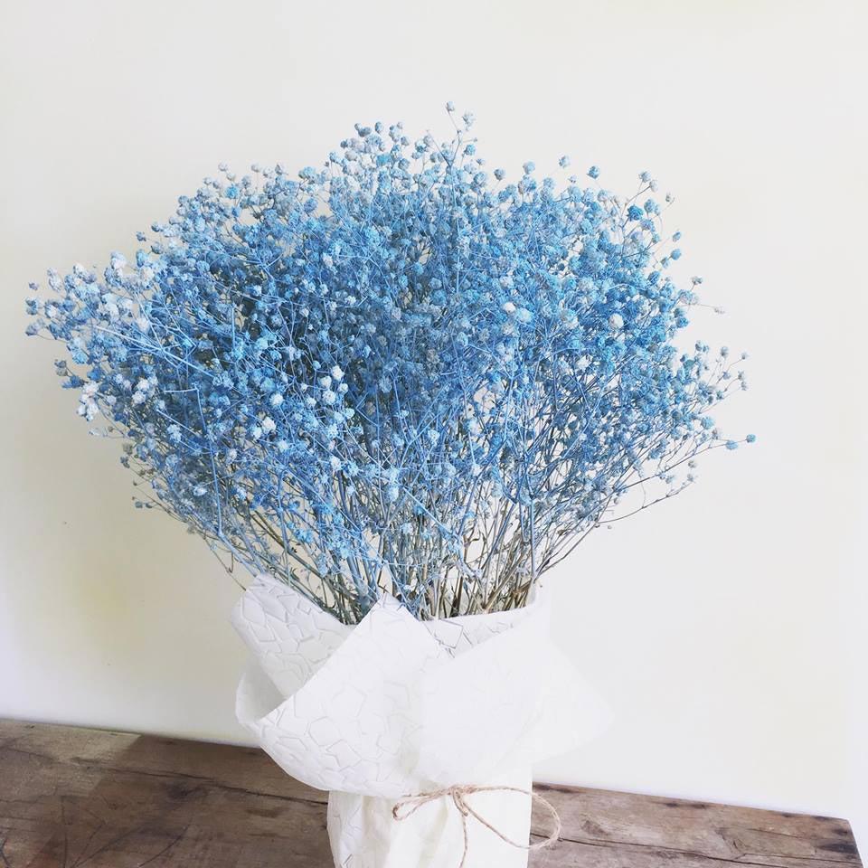 cách làm hoa baby khô 5