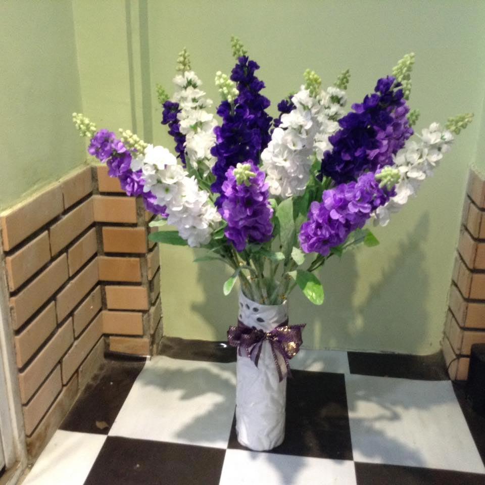hoa phi yến - hoa tươi văn nam 2