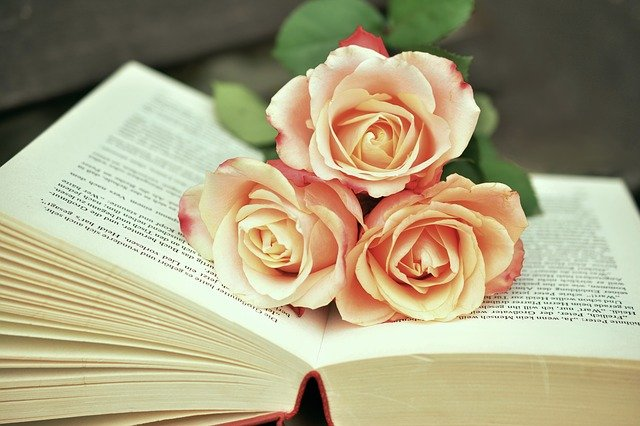 Hoa hồng trang trí, tô điểm không gian sống