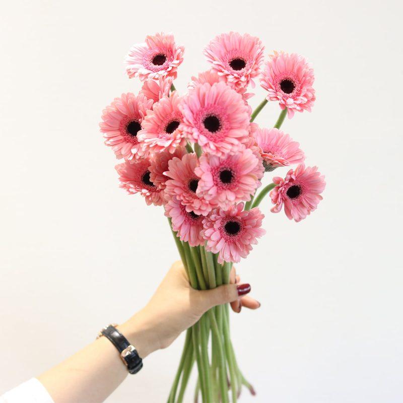 Hoa tươi trang trí đẹp