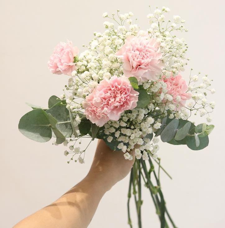hoa cẩm chướng dành tặng sinh nhật mẹ